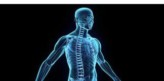 5 lucruri surprinzatoare pe care nu e stii despre corpul uman