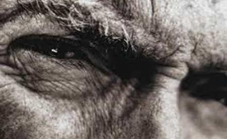 nonverbalul in negocieri limbajul ochilor