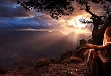 intuitia arta de a trai viata implinita