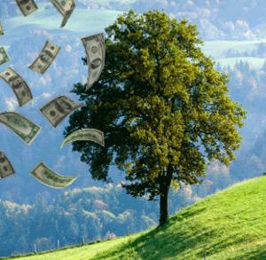 Idei pentru prosperitate - aimee.ro resurse pentru dezvoltare personala si evolutie spirituala