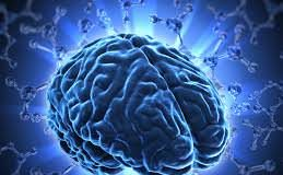 creierul uman ramane in continuare o enigma