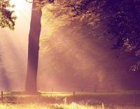 In randurile urmatoare veti gasi o selectie a 15 povestioare de iubire preluate de pe un site din strainatate