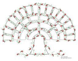 Arborele genealogic vorbeste Ma dor stramosii Editura Philobia