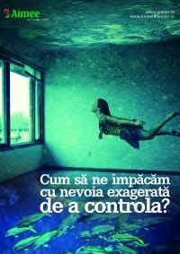 curs-online-control