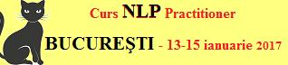 NLP Practitioner Bucuresti