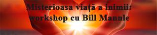 Bill Mannle