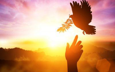 Lasă-ți-Esența-să-strălucească- program-de- transformare- spirituală