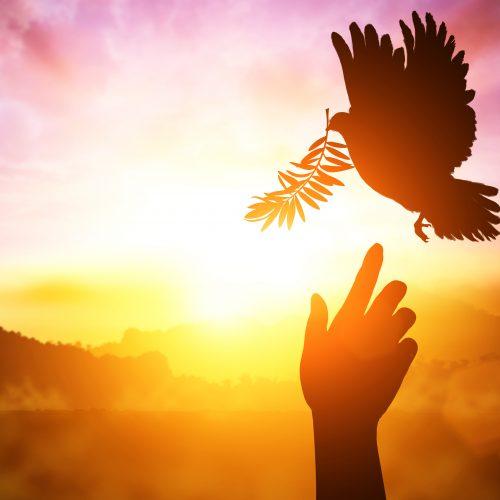 Lasă-ți Esența să strălucească program de transformare spirituală