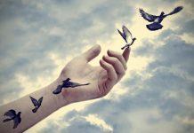 vindecarea liniei temporale sesiuni cu Mihaela Marinas