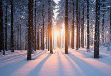 solstitiul de iarna lumina si intuneric